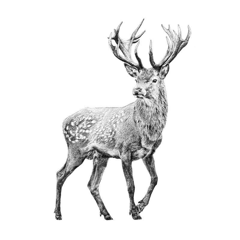 Fine Forest muurstickers, illustratie vlagzalm