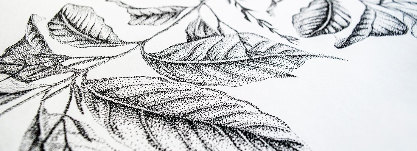 Illustratie puntjes flora planten Fine Forest transparante muursticker
