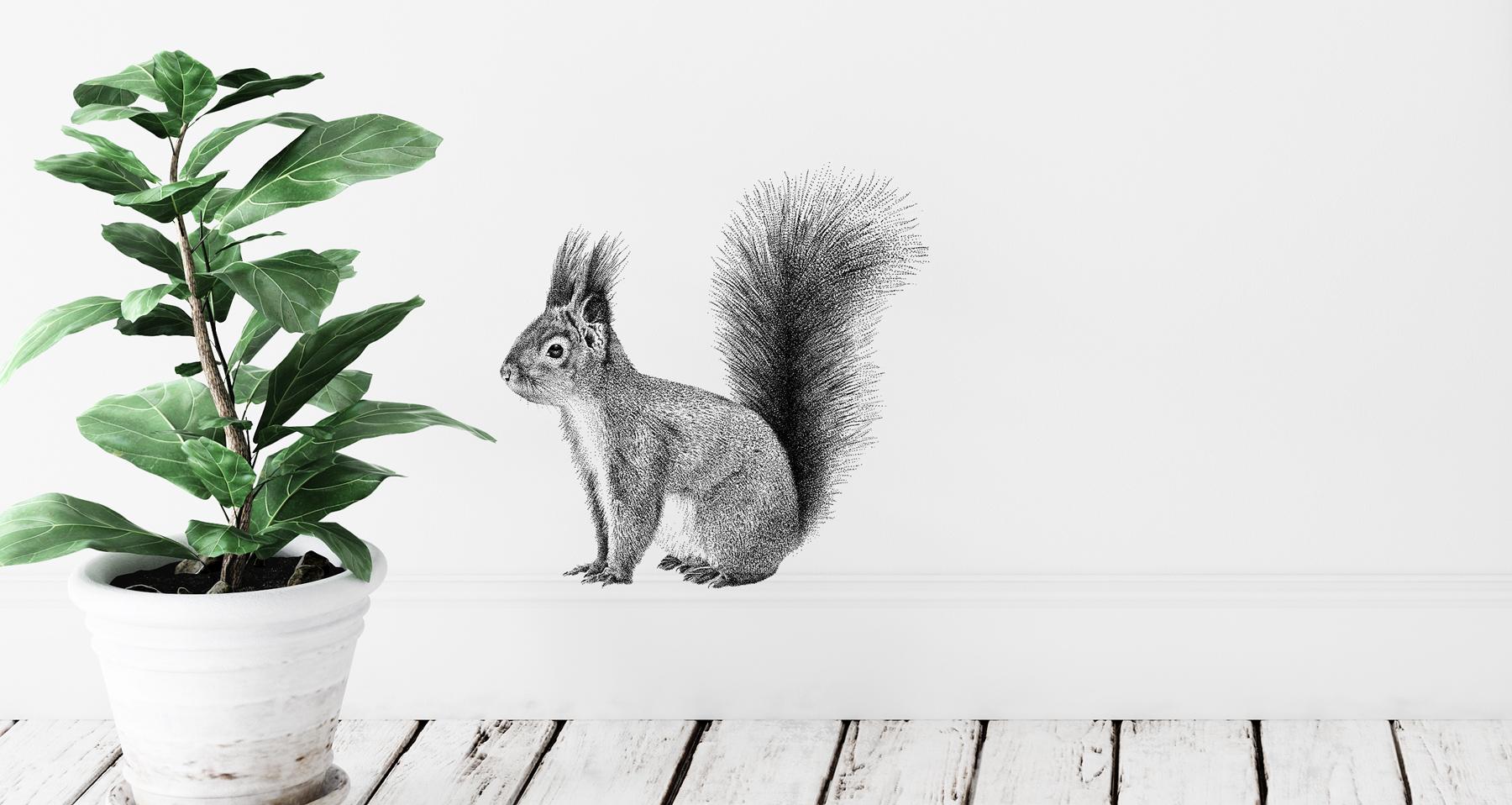 Fine Forest transparante muursticker rode eekhoorn