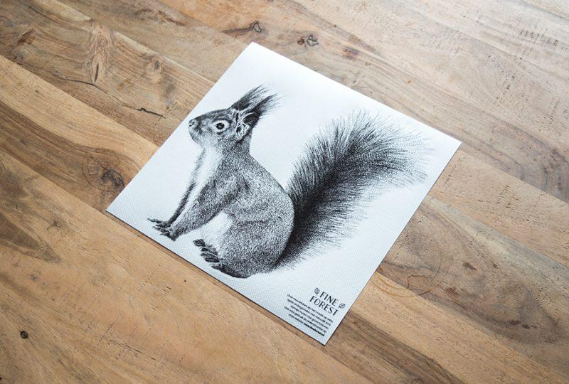 Eekhoorn Fine Forest dieren muursticker