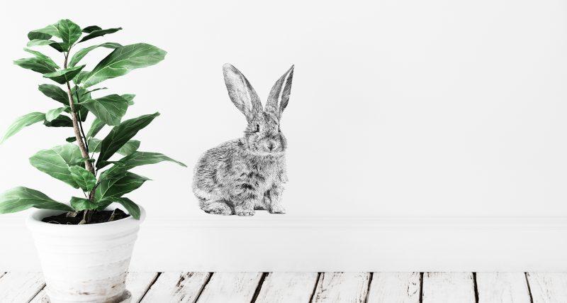 Fine Forest illustratie konijn