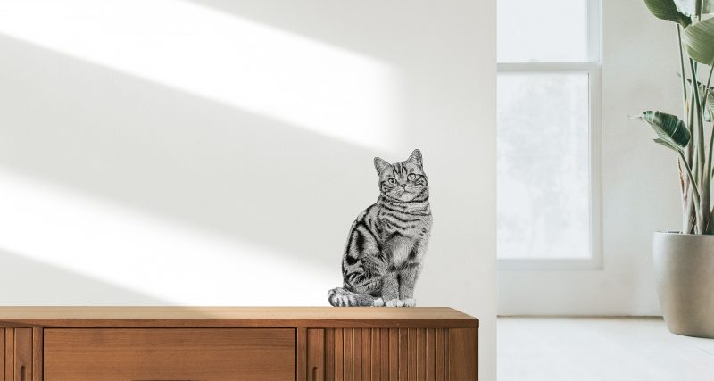 Fine Forest illustratie kat, Britse korthaar, muursticker, muurdecoratie