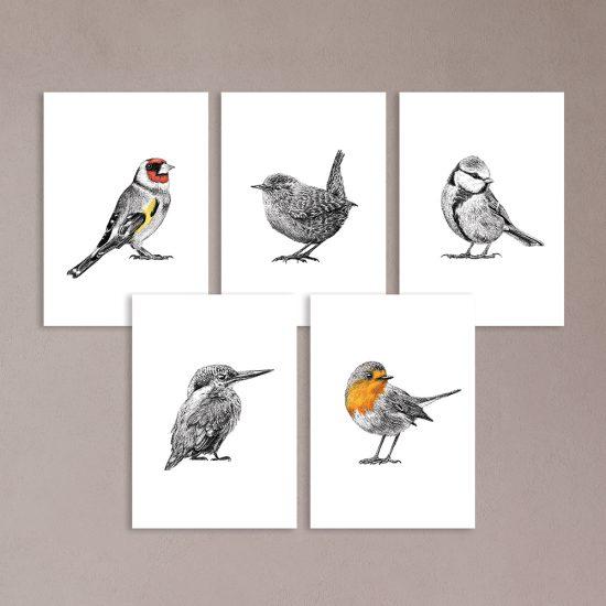 Vogel prints, kaarten, putter, roodborst, winterkoning, pimpelmees, ijsvogel, Fine Forest
