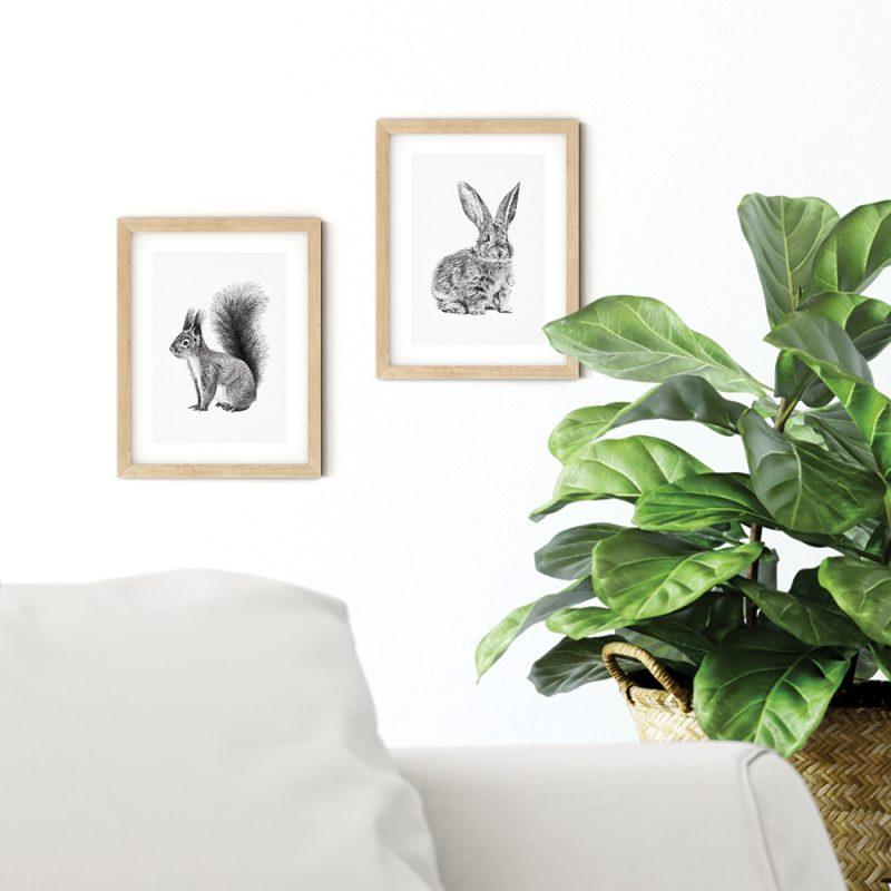 Bosdieren prints, kaarten, ansichtkaarten, rode eekhoorn, konijn, Fine Forest