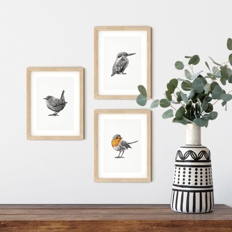 Vogel prints, kaarten, ansichtkaarten, putter, roodborst, winterkoning, pimpelmees, ijsvogel, Fine Forest