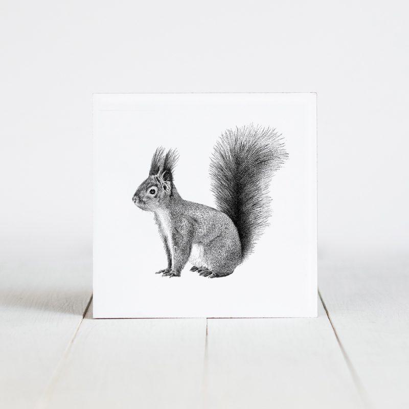 Tegel met Fine Forest illustratie, rode eekhoorn, Fine Forest