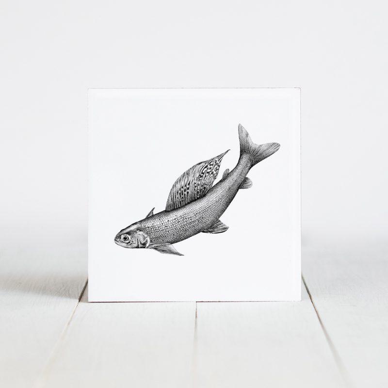 Tegel met Fine Forest illustratie, vis, vlagzalm, Fine Forest